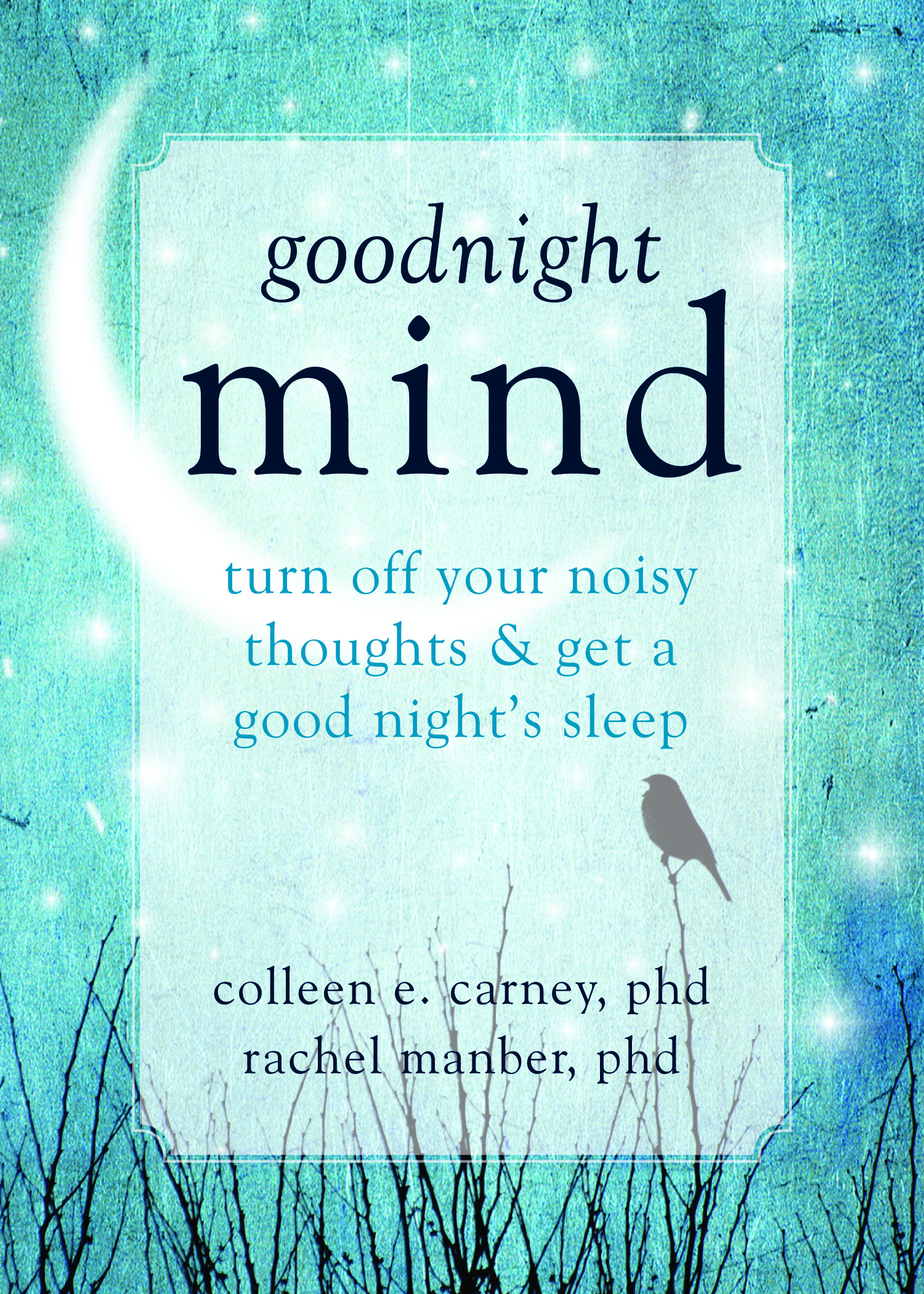 Books | Colleen E  Carney, Ph D , CPsych